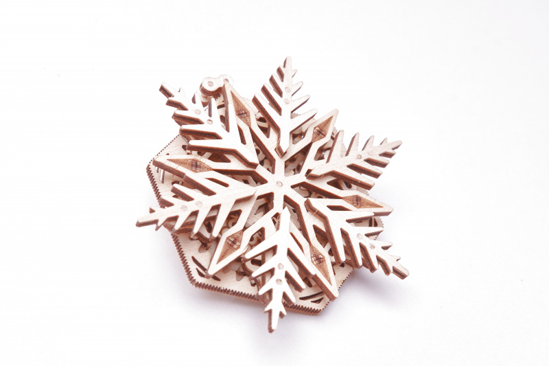 dsc_snow1